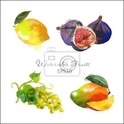 Cuadro limón, higos, uvas, mango