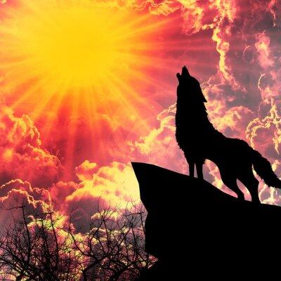 Cuadro lobo en silueta aullidos a la luna llena