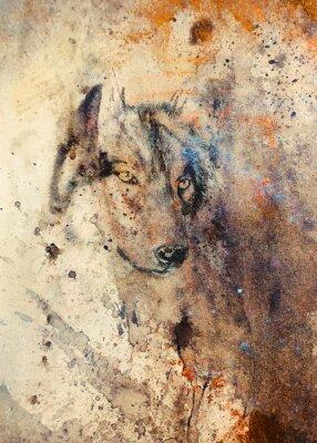 Cuadro Lobo pintura, el efecto de color de fondo en el fondo