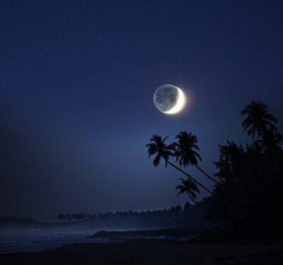 Cuadro Luz de la luna
