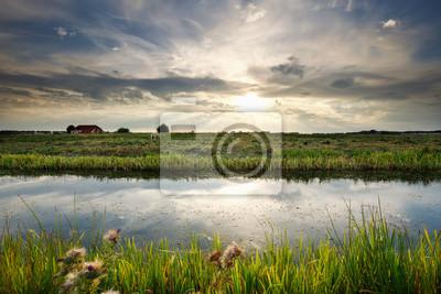 luz solar sobre canal y pasto