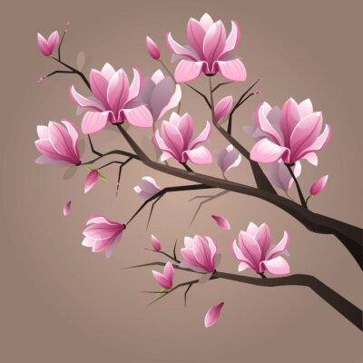 Cuadro Magnolia Flores rosadas