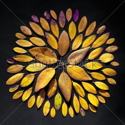Cuadro Mandala hecha a mano de hoja plana sobre fondo negro. Arreglo de mandala bohemio hecho de hojas.