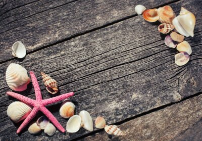 Cuadro Mar conchas sobre fondo de madera