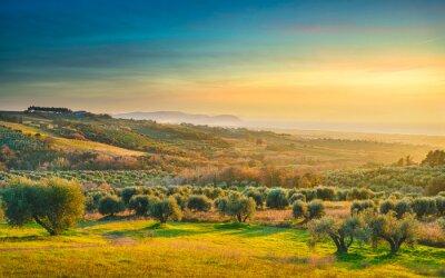 Cuadro Maremma sunset panorama. Countryside, sea and Elba on horizon. San Vincenzo, Tuscany, Italy.