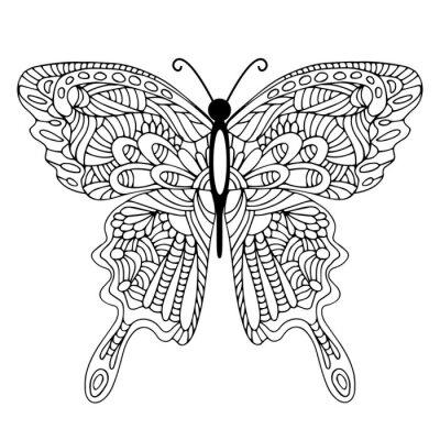 Cuadro Mariposa dibujada mano del doodle