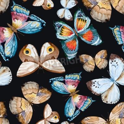 Cuadro Mariposas ilustradas de la acuarela