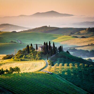 Cuadro Mattino en Toscana, paesaggio e colline