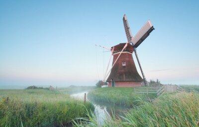 Cuadro Molino de viento holandés en la luz de la mañana