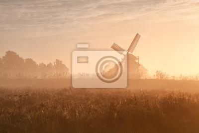 Molino de viento holandés en la niebla y el sol de la mañana