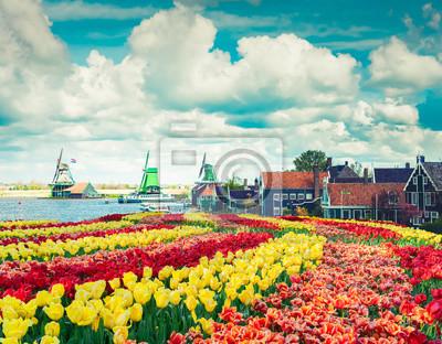 Molinos de viento holandeses
