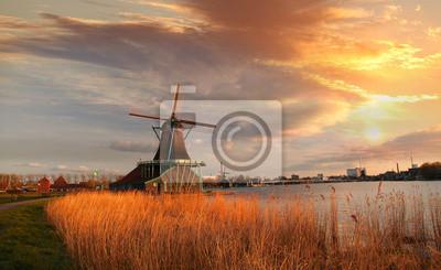Cuadro Molinos de viento holandeses tradicionales con canal cerca del Amsterdam, Holla