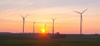 Molinos de viento (turbinas de viento) en un campo al amanecer