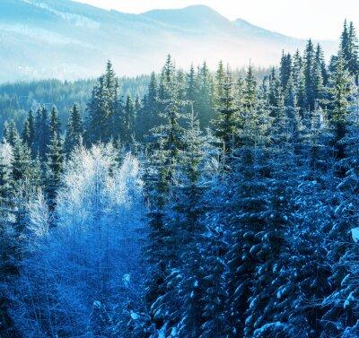 Cuadro Montañas de invierno