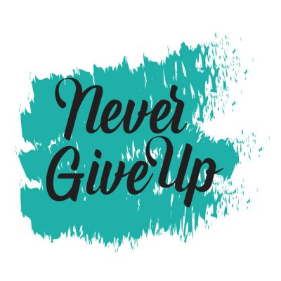 Cuadro Motivational quotes. Never Give Up