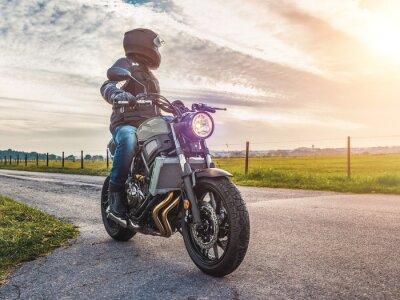 Cuadro Moto en el camino a caballo. Divertirse a caballo por la carretera vacía en un tour de moto / viaje