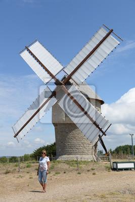 Moulin de la Falaise, Francia
