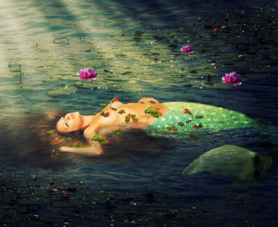 Cuadro Mujer hermosa sirena