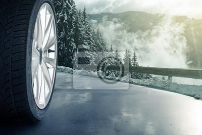 Cuadro Neumático de nieve