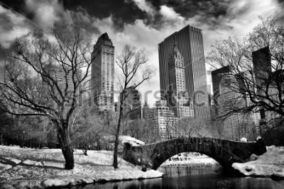 Cuadro New York City - Central Park in winter -Gapstow bridge