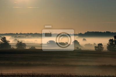 Niebla de la manana