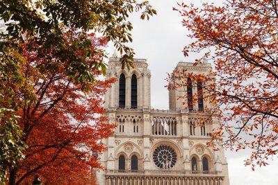 Cuadro Notre Dame, París