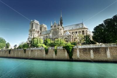 Cuadro Notre Dame Paris, Francia