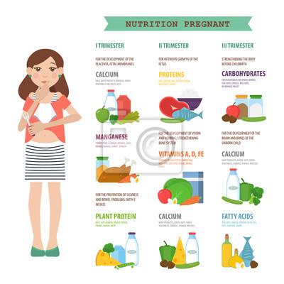 2d05a6ad6 Cuadro Nutrición embarazada. Ilustración vectorial sobre la nutrición de  las mujeres en las diferentes etapas