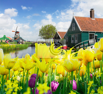 old  houses of Zaanse Schans, Netherlands