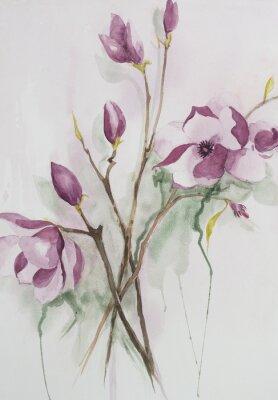 Cuadro Original watercolour, magnolia flowers.