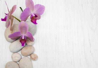Cuadro Orquídeas y piedras de masaje
