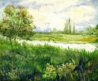 Cuadro Paisaje de acuarela. Árbol joven en el prado cerca del río