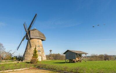 Paisaje de campo con molino de viento en primavera temprana, Europa