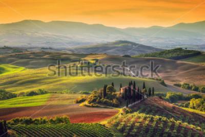 Cuadro Paisaje de la Toscana al amanecer. Típico de la región de la granja de la Toscana, colinas, viñedos. Italia