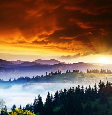 Cuadro Paisaje de las montañas