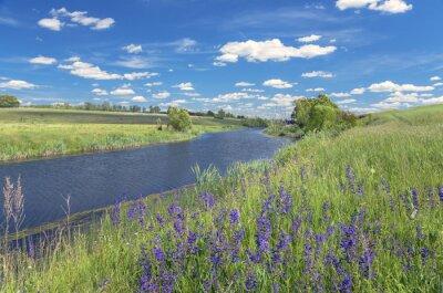 Cuadro Paisaje de verano con el río