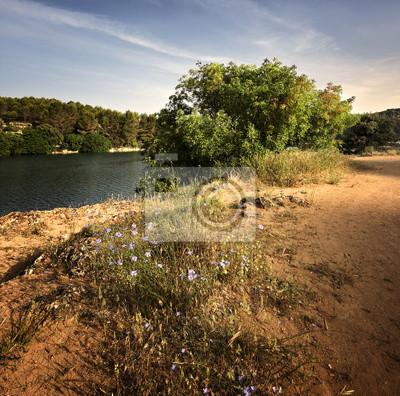 Cuadro Paisaje español con lago