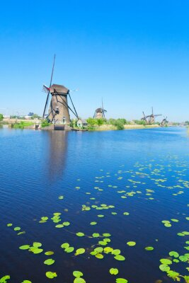 paisaje rural holandés tradicional con molinos de viento en el río en Kinderdijk en el día de verano, Holanda