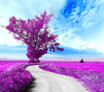 Cuadro Paisaje surrealista. Arbol y camino entre los campos