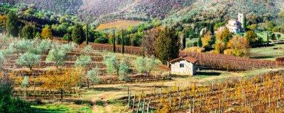 Cuadro Paisajes mágicos de otoño en la campiña toscana. Región vitícola de Italia