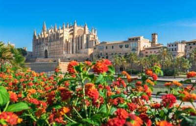 Palma de Mallorca España, Kathedrale La Seu in der historischen Altstadt