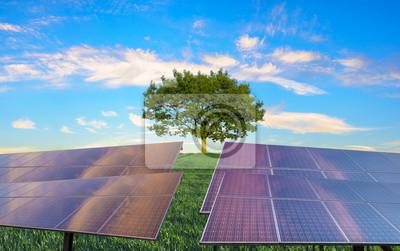 paneles fotovoltaicos y árbol verde: el concepto de fuentes de energía renovables