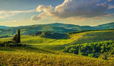 Cuadro Panzano in Chianti vineyard and panorama at sunset. Tuscany, Italy