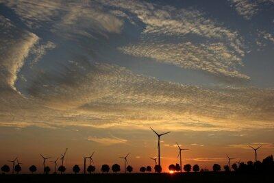 Cuadro Parque eólico im Aufbau atardecer mit Cirrocumuluswolken