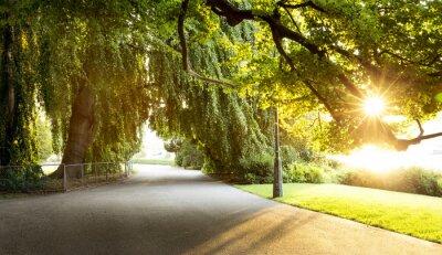Cuadro Paseo en un hermoso parque de la ciudad