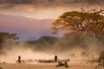 Cuadro Pastores masai con ovejas y cabras