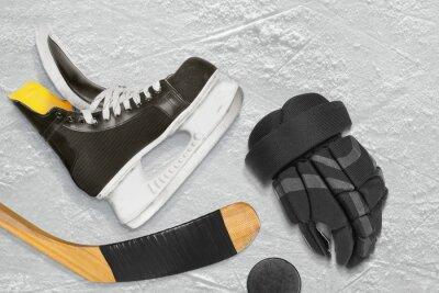 Cuadro Patines de hockey, palo, guantes y disco