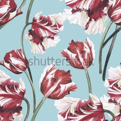 Cuadro Patrón floral transparente con tulipanes, acuarela