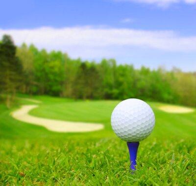 Cuadro Pelota de golf en curso