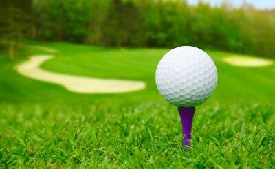 Cuadro Pelota de golf en el curso